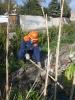 13.04.2012 Teichpflege :: Teichpflege