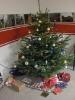 14.12.2012 Weihnachtsfeier :: Weihnachtsfeier